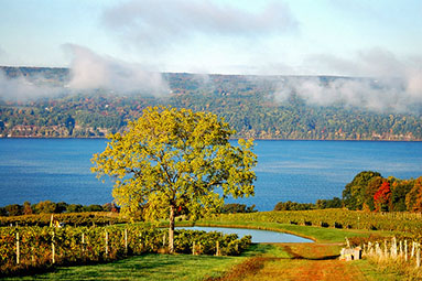 new-york-finger-lakes